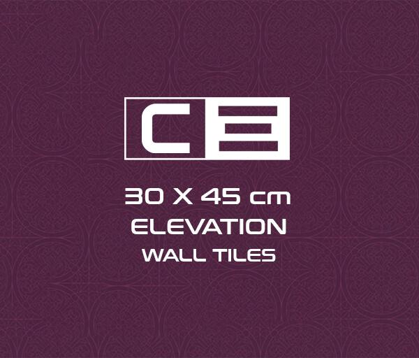 30 x 45 cm Elevation